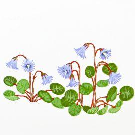 TORTON dessin original de fleurs