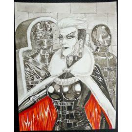 VAN DE WALLE illustration couleur A3 n° 9 Dame blanche Veuve Nuremberg